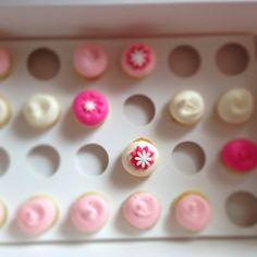 mini cupcakes dc