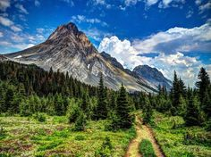 Mount Birdwood Photo by Lorie Gibson -- National Geographic Your Shot #landscape #mountains