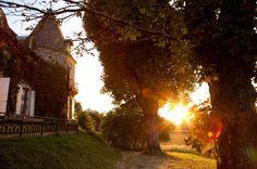 love that light & lens flare framed by the trees