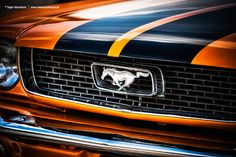 AmericanMuscle.de - Fotoshooting: 1966 Ford Mustang Coupe