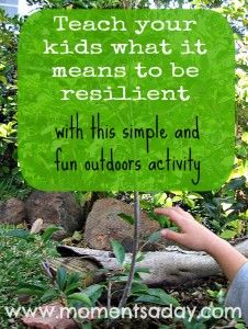 Learning About Resilience Through Nature: A simple activity to help your children learn about taking challenges in stride