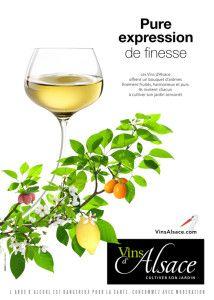Vins d'Alsace - Pure expression de finesse