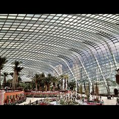 Stunning interior of the Dome @ Garden by the bay singapore