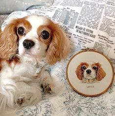 Hyperrealistic Pet Portraits Embroidered by Emillie Ferris