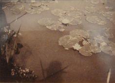 Autoportrait de Claude Monet, avec son ombre à la surface du bassin au nymphéas, Giverny (1915)