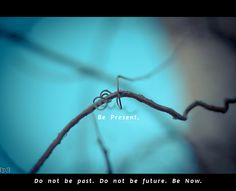 Do not be past. Do not be future. Be Present