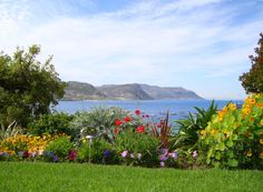 Simons Town Holiday Accommodation with a view and a lovely colourful garden.     Who would not like such a view from her Simonstown holiday accommodation?