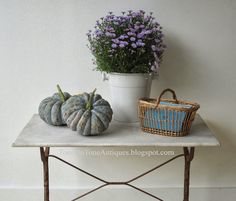 Fall decorating. Asters, basket and gourds....Tone on Tone