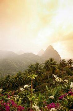The Caribbean island of St Lucia