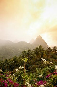 The Caribbean island of St Lucia