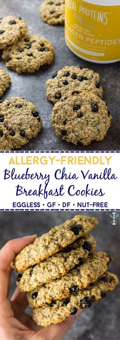 #ad These blueberry chia vanilla breakfast cookies with Vital Proteins vanilla collagen peptides are allergy-friendly! No gluten, dairy, soy, eggs, or tree nuts.