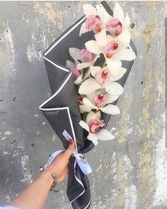 Ideas flowers bouquet gift graduation for 2020 Boquette Flowers, How To Wrap Flowers, Beautiful Bouquet Of Flowers, Luxury Flowers, Paper Flowers, Beautiful Flowers, Flowers Garden, Wedding Flowers, Flower Bouquet Diy