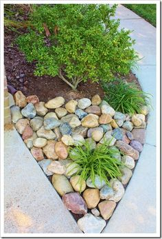 river rock by driveway with liriope and creeping jenny