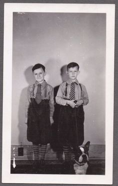VINTAGE BERWICK PENNSYLVANIA BOSTON TERRIER DOG BROTHERS IN KNICKERS OLD PHOTO in Collectibles, Photographic Images, Vintage & Antique (Pre-1940), Other Antique Photographs | eBay