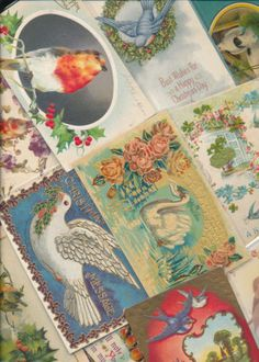 Lot-of-25-Greetings-Postcards-all-with-Beautiful-BIRDS-birds-Vintage-sss49