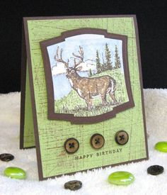 Stampin Up - Noble Deer; Sanded B/G Stamp  Paper: Certainly Celery, Chocolate Chip  Ink: Stazon Brown, Certainly Celery and Creamy Caramel Markers