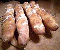 Filoncino    Classic Italian Bread      This long, airy bread is the Italian cousin of France's baguette.