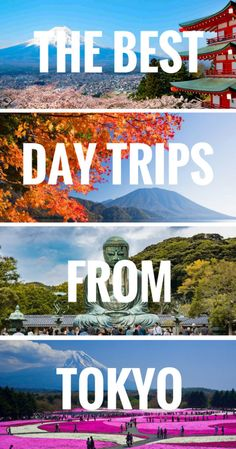 The best day trips from Tokyo, Japan. Learn all the famous tourist attractions you can explore on a day tour from Tokyo. Especially if you got a JR Rail Pass Tokyo day trips are cheap and easy. Tokyo Japan Travel, Japan Travel Guide, Asia Travel, Travel Guides, Japan Trip, Tokyo Trip, Tokyo 2020, Travel Hacks, London Travel