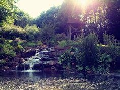 Village XVIIIème - Puy du Fou  #water #cascade #flower #garden #jardin #fleur #nature #soleil #sun #holidays