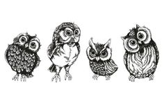 A5 Print  4 Pencil Sketch Owl All In A Row (Picture Poster Funny Animal Art)