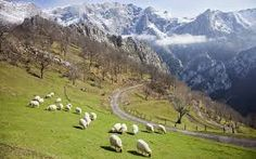 The northern Spanish province of Asturias offers the visitor stunning landscapes and intriguing cities. Here are the best places to go. The Visitors, Travel List, Where To Go, The Good Place, Spanish, Places To Visit, Culture, Mountains, City
