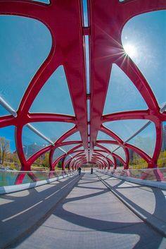 peace bridge by santiago calatrava