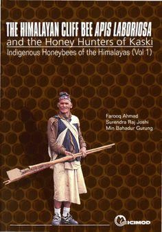 himalayan honey hunters | The Himalayan Cliff Bee Apis laboriosa and the Honey Hunters of Kaski ...
