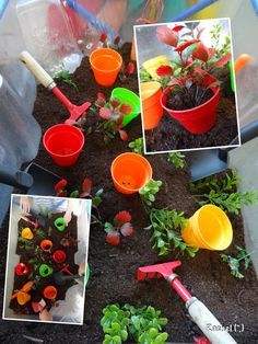"""Gardening Indoor Jardinage dans le bac à eau - de Rachel ("""",) - Ideas for indoor garden related activities in the Early Years. from Rachel ("""",) Eyfs Activities, Nursery Activities, Spring Activities, Tuff Spot, Tuff Tray, Small World Play, Outdoor Classroom, Sand And Water, Outdoor Learning"""
