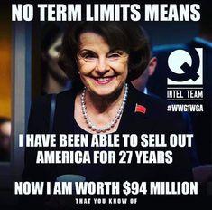 Need term limits! Liberal Hypocrisy, Political Corruption, Political Views, Socialism, Truth Hurts, It Hurts, Political Quotes, Political Books, Conservative Politics