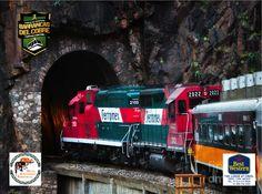BARRANCAS DEL COBRE te dice. Viajar  en el CHEPE, es verdaderamente enriquecedor, pues es el único tren de pasajeros existente en México en las cabinas de lujo y puedes asomarte a la ventana, y apreciar el hermoso paisaje, disfrutar del el aire fresco y la maravilla del entorno. www.chihuahua.gob.mx/turismoweb