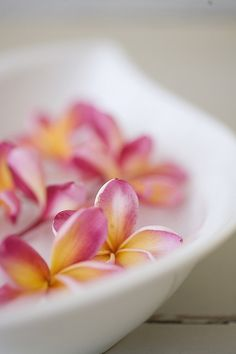 pretty - can be centerpieces for Maui wedding