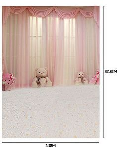 background pink portrait studio backdrop theme stage vinyl backdrops
