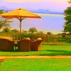 Read about the perfect place to getaway in Kenya:Lake Elmentaita Serena Camp on my Travel blog: www.scrapbookjourneys.com #ScrapbookJourneys #TravelBlog #Travel