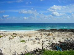 untouched beaches... Cozumel!