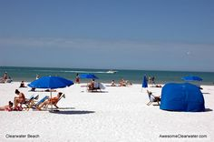Clearwater Beach Activities