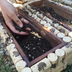 adding-dirt-beckmen-vineyards