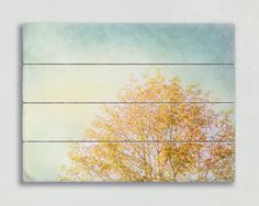 Modern Plank Art Yellow and Blue Wooden Sign by PureNaturePhotos