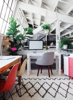 #decor #office #plants