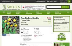 http://www.brecks.com/product/bumblebee-deelite-dwarf-bearded-iris