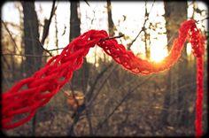 finger strikking i skogen