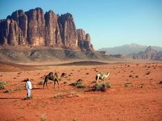#ExpediaThePlanetD my next stop after Iran would be Jordan where I'd start with visiting Wadi Rum desert and ride a camel there!