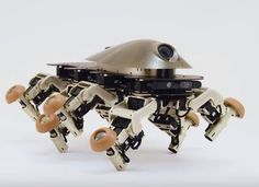 Video Friday: Eight-Legged Robot, CMU's BallBot, and Rodney Brooks on AI - IEEE Spectrum