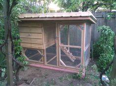Living roof chicken coop 1