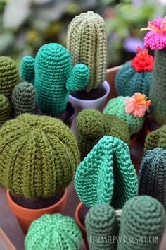 amigurumi crochet cactus in clay pots - cactus all'uncinetto in vasi di terracotta