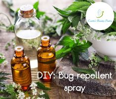 Cosette's Beauty Pantry: DIY: Bug repellent spray 🐛🐜 🐌