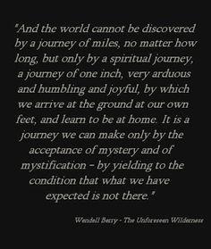 """Wendell Berry, """"The Unforeseen Wilderness""""    true!!!"""