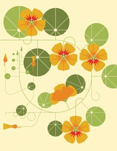 Nasturtiums, an art print by Emma Clinton - INPRNT Botanical Illustration, Illustration Art, Fleurs Art Nouveau, Flower Pot Design, Plant Painting, Tapestry Design, Art Challenge, Kawaii, Garden Art