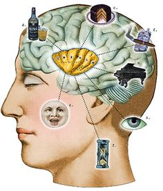 I've been really wanting to do some projects based on pics of the brain! I like the idea of adding your own humorous images of what uses up the brain processing