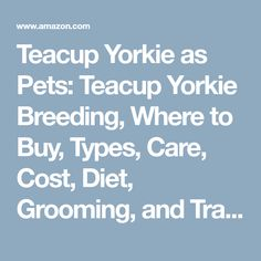 Teacup Yorkie as Pets: Teacup Yorkie Breeding, Where to Buy, Types, Care, Cost, Diet, Grooming, and Training all Included. A Complete Teacup Yorkie Owner's Guide: Lolly Brown: 9781941070987: Amazon.com: Books Tiny Puppies For Sale, Teacup Yorkie, Pet Breeds, Tea Cups, Training, Diet, Type, Amazon, Brown