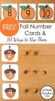 4 Free Printable Fall Number Cards and 10 Hands-on Ways to Use Them. Includes four versins apples, leaves, pumpkins, and acorns. Great for number sense and number recognition
